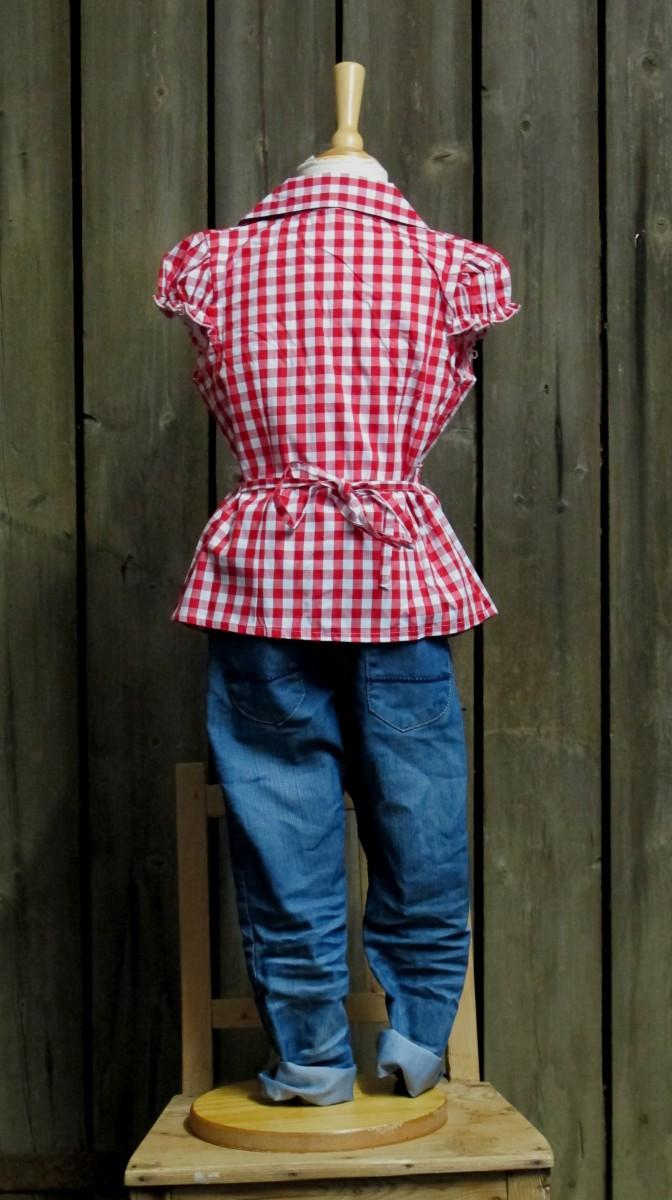kidstracht bluse rot wei trachtenbluse kariert z lederhose u jeans gr 80 170 ebay. Black Bedroom Furniture Sets. Home Design Ideas